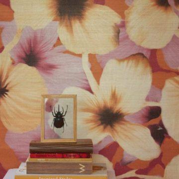 Aux Abris Floratique color Anemone