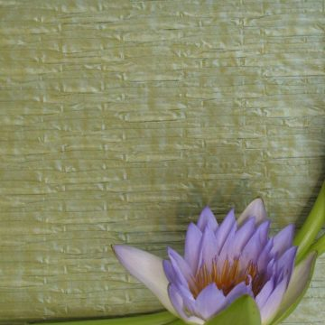 NEW ROMANCE Bamboo Pleat_preview